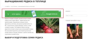 Контекстная реклама. Drogin.ru