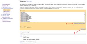Проверка robots.txt для оптимизации сайта. Drogin.ru
