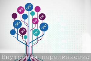Внутренняя перелинковка сайта для его оптимизации. Drogin.ru