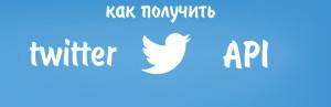Как получить Twitter API для плагина WordPress. Drogin.ru