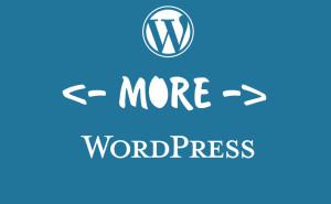 Исправление тега Read More - читать далее для WordPress. Drogin.ru