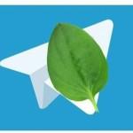 29.03.2018 — сбой в работе Telegram в нескольких странах
