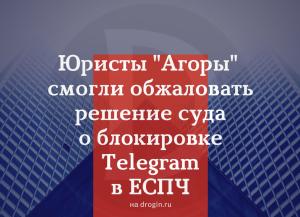 Юристы Агоры смогли обжаловать решение суда о блокировке Telegram в ЕСПЧ